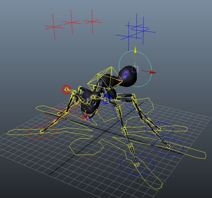 ant rig